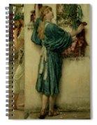 The Street Altar Spiral Notebook