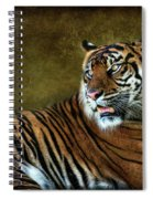 The Sumatran Tiger  Spiral Notebook