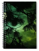 The Sun Through Clouds And Branches  Spiral Notebook