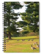 The Sunny Stroll Spiral Notebook