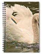 The Swan Spiral Notebook