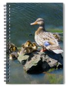 The Swimming Lesson Spiral Notebook