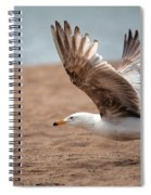The Take Off Spiral Notebook
