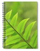 The Tip Of A Fern Spiral Notebook
