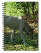 The Tracker Spiral Notebook