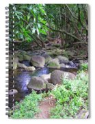 The Trail By The Creek Spiral Notebook