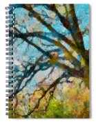 The Tree Of Many Colours  Spiral Notebook
