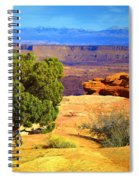 The Tree The Canyon And The Mountains Spiral Notebook