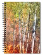 The Trees And The Colour Spiral Notebook