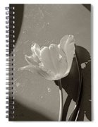 The Tulip And The Shadows Spiral Notebook