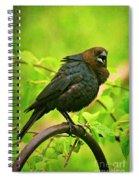 The Usurper Spiral Notebook