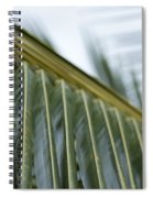 The Vision Spiral Notebook