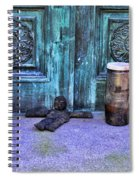 The Voodoo Doll Spiral Notebook
