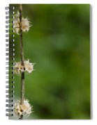 The Wand Of Winter Faces The Power Of A Green Spring Spiral Notebook
