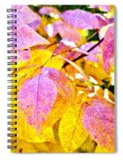 The Warm Glow In Autumn Abstract Spiral Notebook