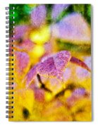 The Warmth Of Autumn Glow Abstract Spiral Notebook