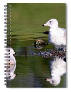 The Water's Fine Spiral Notebook