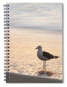 The Wave Recedes  Spiral Notebook