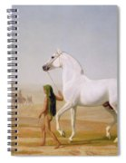 The Wellesley Grey Arabian Led Through The Desert Spiral Notebook