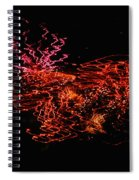 The Will O The Wisps Spiral Notebook