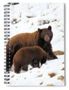 The Winter Guide Spiral Notebook