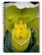 The Yellow Orchid Spiral Notebook