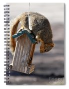 Theif  Spiral Notebook