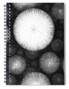 Theory Of The Universe Spiral Notebook
