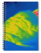 Thermogram Of A Child Sleeping Spiral Notebook