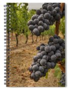 They Stand Alone Spiral Notebook