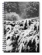 Think Snow Spiral Notebook