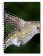Thirsty Critter Spiral Notebook