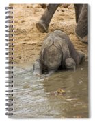 Thirsty Young Elephant Spiral Notebook
