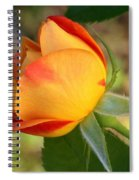 This Bud's For You Spiral Notebook
