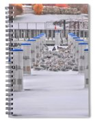 This Cold's For The Birds Spiral Notebook