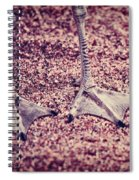 This Is Not A Bird Spiral Notebook