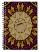 This Is Pure Love And Festivitas Spiral Notebook
