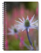 Thistle Dream Grove Spiral Notebook