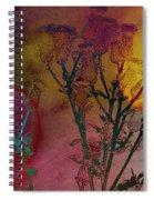 Thistle Lanterns Spiral Notebook
