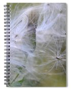 Thistle Seeds Spiral Notebook