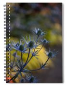 Thistles Abstract Spiral Notebook
