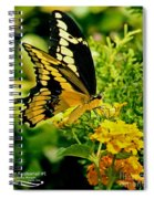 Thoas Swallowtail #1 Spiral Notebook