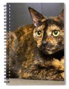 Thorette Spiral Notebook