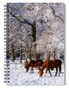 Thoroughbred Horses, Mares In Snow Spiral Notebook