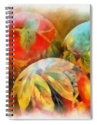 Three Balls - Watercolor Spiral Notebook