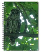 Three Barred Owls Spiral Notebook