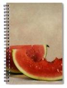 Three Bites Of Summer Spiral Notebook