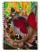Three Butterflies On Protea Spiral Notebook