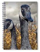 Three Canada Geese In An Autumn Cornfield Spiral Notebook