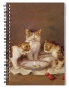 Three Cats - Red Cherries And Bees Spiral Notebook